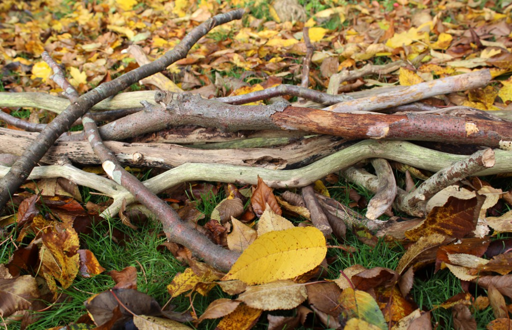 jala_Blog_Adventskalender_Aeste